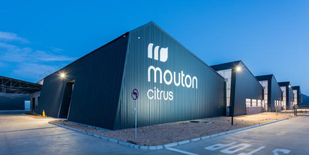 mounton citrus - exterior #7